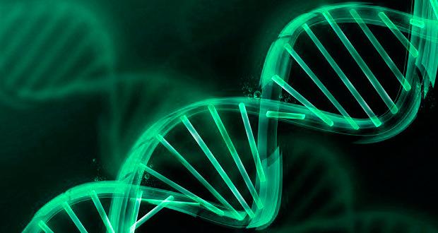 Para Katriona Guthrie-Honea, instructora del taller de biotecnología en RobotiX e investigadora del Instituto Tecnológico de Massachusetts, es importante conocer los avances tecnológicos aplicados en la biología humana y animal, ya que son la vía para generar productos ecológicos, sustentables y renovables en pro del desarrollo humano.